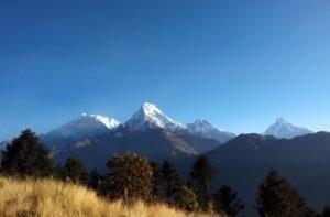 Pokhara to Ghorepani poon hill trek 5 days enjoy Poon hill trek Nepal