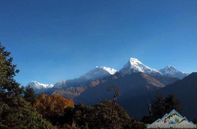 Ghorepani to Tadapani trek distance, weather, altitude of Tadapani Nepal