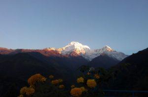 Jhinu Danda to Tolka via Landruk trek distance, elevation & route map